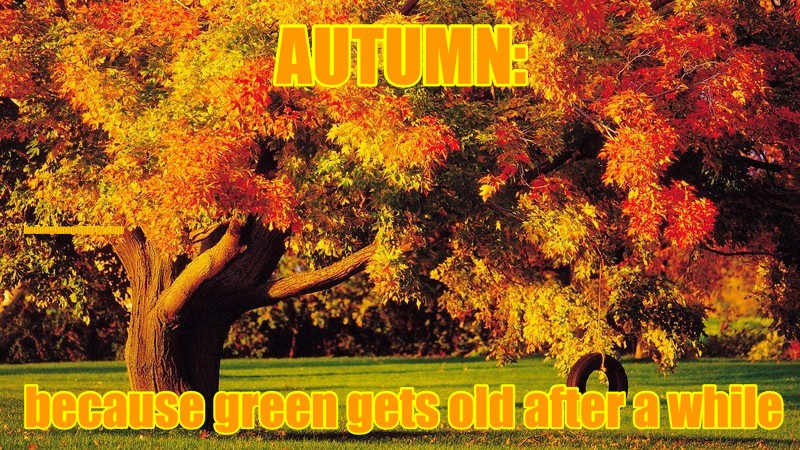 AUTUMN:  because green gets old after a while