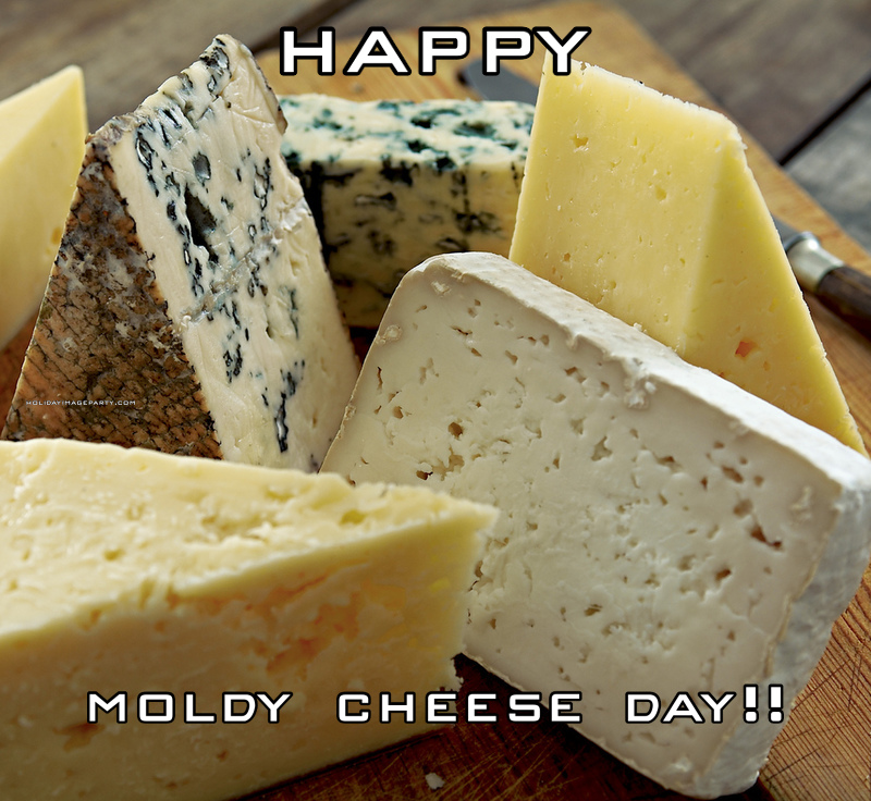 happy    moldy cheese day!!