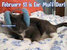 February 13 is Ear Muff Day!