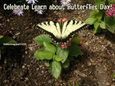 Celebrate Learn about Butterflies Day!