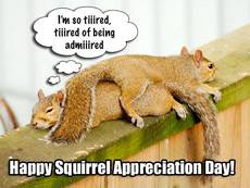 Happy Squirrel Appreciation Day!