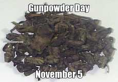 Gunpowder Day November 5