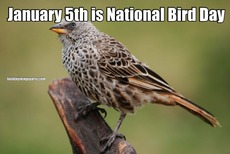 January 5th is National Bird Day