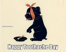 Happy Toothache Day