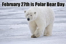 February 27th is Polar Bear Day