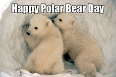Happy Polar Bear Day