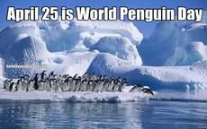 April 25 is World Penguin Day