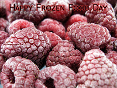 Happy Frozen Food Day