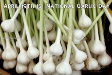 April 19th is  National Garlic Day