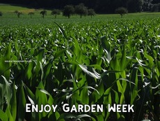 Enjoy Garden Week
