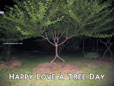 Happy Love a Tree Day