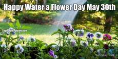 Happy Water a Flower Day May 30th