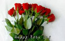 Happy Rose Day