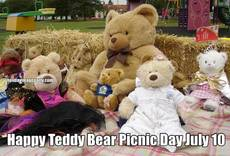 Happy Teddy Bear Picnic Day July 10