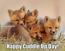 Happy Cuddle Up Day!