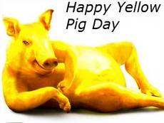 Happy Yellow Pig Day