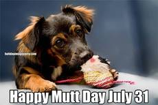 Happy Mutt Day July 31