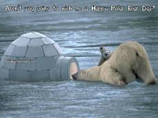Aren't you going to wish me a Happy Polar Bear Day?