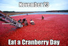 Category Eat a Cranberry Day