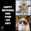 Category Hug Your Cat Day