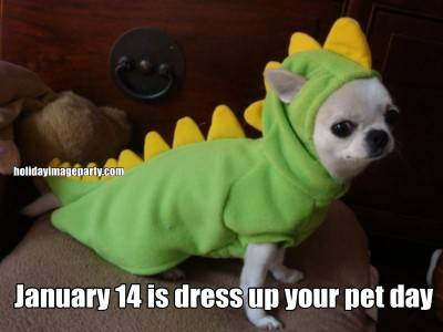 January 14 is dress up your pet day