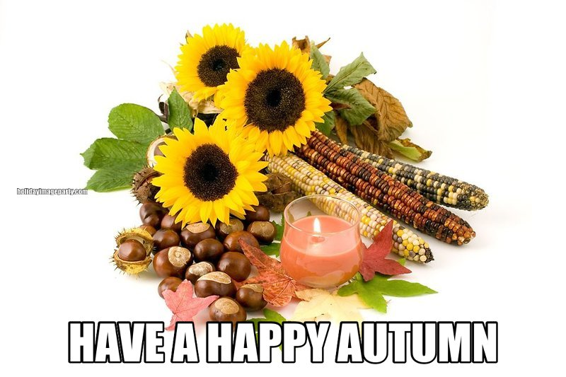 HAVE A HAPPY AUTUMN