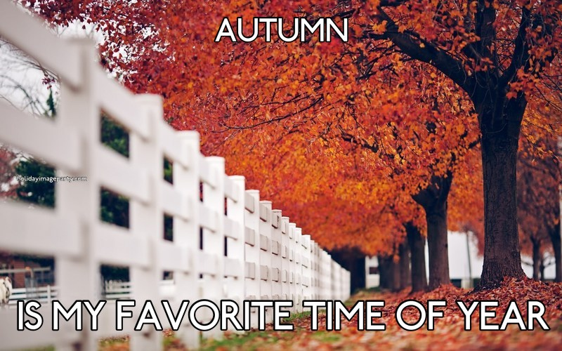 AUTUMN IS MY FAVORITE TIME OF YEAR