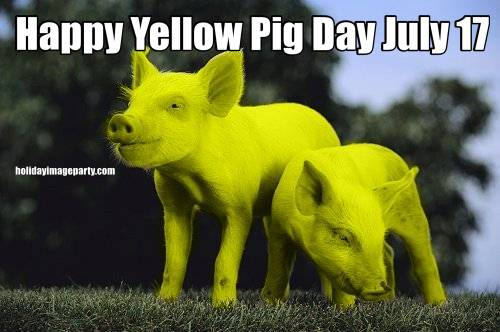 Happy Yellow Pig Day July 17