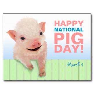 Happy National Pig Day