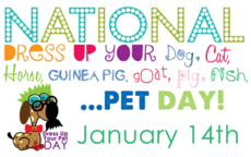 Dress Up Your Pet Day