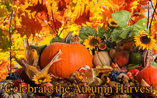 Celebrate the Autumn Harvest