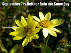 September 7 is Neither Rain nor Snow Day