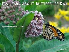 It's Learn about Butterflies Day