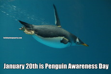 January 20th is Penguin Awareness Day