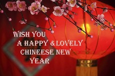 Wish you a happy and lovely Chinese New Year