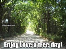 Enjoy Love a tree day!