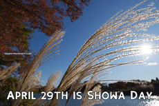 April 29th is Showa Day