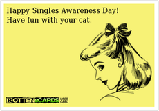 Happy Singles Awareness Day! Have fun with your cat.