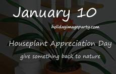 January 10 Houseplant Appreciation Day